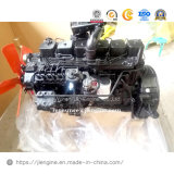 6btaa5.9-C175 175HP 128kw moteur Diesel 5.9L complet pour la machinerie de construction