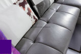 Мебель софы неподдельной кожи комнаты Divan живущий