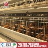Cages de couche d'oiseau de batterie pour la ferme de poulet
