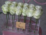 납품 포장을%s 플라스틱 유리 장방형 꽃 상자