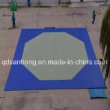 Циновки Matexercise Matsport Matmattaekwondojudo пены Qingdao Sanhong