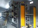 Оборудование цыплятины Xinguangzheng для клетки слоя