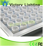 Indicatore luminoso del baldacchino del LED con il migliore prezzo