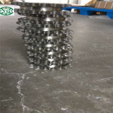 Las cadenas de la conducción de la cadena de hileras laterales de acero inoxidable SS08bsb ss10bsb ss12ss08bsbf bsb1 ss16bsb SB2050SSC.