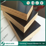 9-18m Thickness Marine Construction Material Shuttering Film Faced Plywood