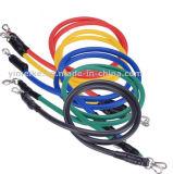 TPE de 11 pièces Bandes élastiques Portable résistance Sport tirer la corde