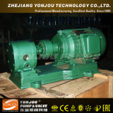 Ycb 400 Degc Calor Preservación Especialidad Bomba con Calefacción Chaqueta