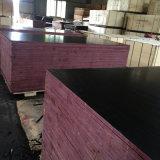 A película do preto do folheado do núcleo do Poplar enfrentou a madeira compensada do Manufactory (18X1250X2500mm)