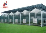 PC de alta calidad en la agricultura de invernadero