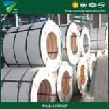 Bobina de acero de Glavanized de la buena calidad para los edificios de la estructura de acero