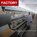 Cage de poulet de couche pour l'usine du Sri Lanka de ferme de poulet