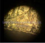 Microscopio metalúrgico invertido para la inspección de las herramientas del metal del instituto (LIM-302)