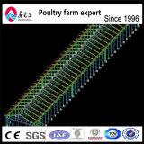 Дом сарая фермы слоя цыпленка цыплятины стальной структуры конструкции индустриального строительства Prefab