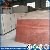Classe Bintangor de BB/CC/madeira compensada da folhosa da folha de folheado madeira de pinho para a mobília