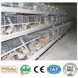 산업 강철 가금은 어린 암탉 닭을 놓기를 위해 감금한다