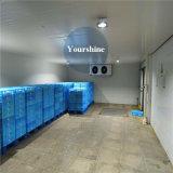 Kühler Raum-Kaltlagerung für Fleisch-Logistik-Mitte mit konkurrenzfähigem Preis