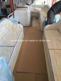 7.5m Aluminium Ponton Boot für Passagier-neues Modell