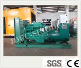 Biogás de alimentação pequeno gerador de gás do motor