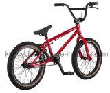 20дюйма новых Jugar BMX-Freestyle Bike/BMX/BMX велосипеды BMX Freesty/велосипедов