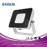 10With20With30With50With100With200W proiettore lungo del cavo LED Driverless con la parentesi