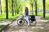 Kits eléctricos 1000W de la conversión del motor del eje de la bicicleta con el regulador incorporado