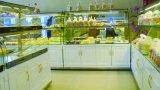 Pain Pain/Cake Shop Non-Cooling étagères d'affichage
