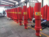 중국에서 Shandong Xingtian 액압 실린더 공급자