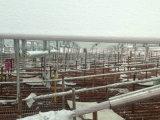 Гальванизированный обрамлять стального датчика света строительного материала стальной