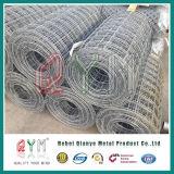 Roulis enduit par PVC soudé de maillage de soudure de Rolls /Galvanized de treillis métallique