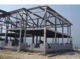 Estructura de acero de la luz de almacén/ Taller de estructura de acero (BYSS012204)