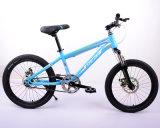 Хорошее качество спортивный велосипед для детей/детей на горных велосипедах с дешевой цене
