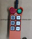 L'elevatore programmabile della coda di telecomando, il telecomando della gru senza fili, Radio Remote gestisce per la gru, interruttori del fusibile di telecomando