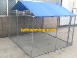 Kettenlink Roofed grosses Hundehaus