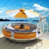 Freizeit BBQ-Boot für Seeufer-Tourismus