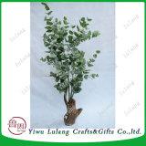 244PCS Boom van het Geld van de Installatie van de Eucalyptus van bladeren de Kunstmatige Gevlechte, Gelukkige Boom