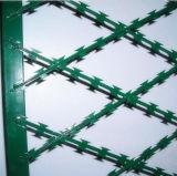 Protecção galvanizada fio navalha galvanizado