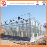 Дом стеклянных/полости Tempered стекла зеленая с системой вентиляции