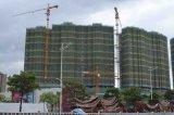 構築の建物のTopkitのタワークレーン