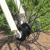 """Bicicleta elétrica da praia da bateria lítio da venda quente 26 de """" (RSEB-1214)"""