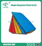 Портативные циновки гимнастики толщины для циновки конкуренции складывая