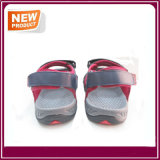 Wholesale Men's Beach Sandal Shoes