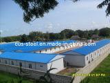Prefab Construction Factory Structure en acier léger