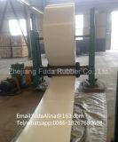 China-Großhandelsqualitäts-weiße Nylonförderbänder und Gummiförderband Qualitätep-Nn
