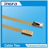 O PVC cheio revestiu 316 cintas plásticas inoxidáveis da classe com a cabeça 4.6X450mm