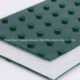 Courroie transporteuse de chlorure de polyvinyle et de PVC industriel léger de qualité supérieure