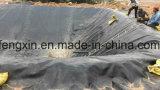 Pescado y camarones Pond Liner PEAD Película, membrana impermeabilizante
