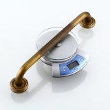 Gli accessori della stanza da bagno dell'oggetto d'antiquariato di sicurezza di Flg scelgono la barra di gru a benna