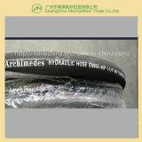 Embout de durites hydraulique spiralé de fil (EN856-4SP-1-1/4)