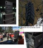 Bruciacchiatura Ns12 un'audio riga altoparlante da 12 pollici di schiera