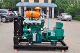 gaz naturel de groupe électrogène 30kw